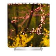 Spring Blossoms I Shower Curtain