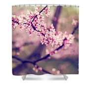 Spring Blossoms II Shower Curtain