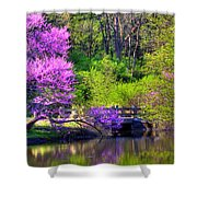 Spring Blossoms On Lake Marmo Shower Curtain