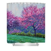 Spring Blossoms On Mill Mountain Shower Curtain