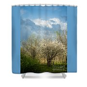 Spring Blossoms Storm Approaching Shower Curtain