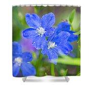 Spring Blue Shower Curtain