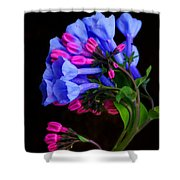 Spring Bluebells Shower Curtain