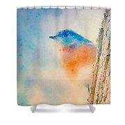 Spring Blues - Digital Watercolor Shower Curtain