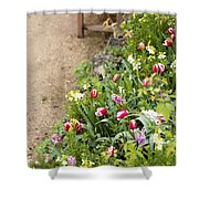 Spring Border Shower Curtain