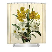 Spring Bouquet Of Daffodils And Narcissus With Butterfly Vertical Shower Curtain