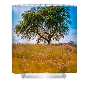 Spring Breeze Shower Curtain