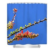 Spring Buds 32815 Shower Curtain