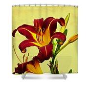 Spring Candor Shower Curtain