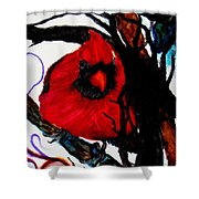 Spring Cardinal Shower Curtain