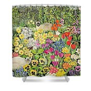 Spring Cats Shower Curtain by Hilary Jones