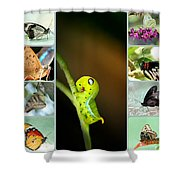 Spring Collage Shower Curtain