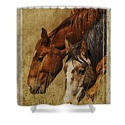 Spring Creek Basin Wild Horses Shower Curtain