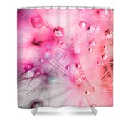 Spring - Dandelion With Water Droplets Abstract Shower Curtain