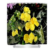 Spring Delight In Yellow Shower Curtain