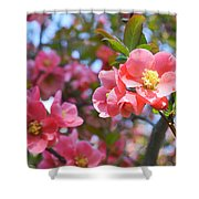 Spring Everywhere Shower Curtain