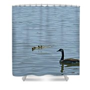 Spring Flotilla With Guardians Shower Curtain