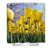 Spring Flowers 10 Shower Curtain
