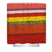 Spring Flowers 13 Shower Curtain