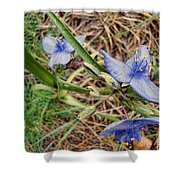 Spring Flowers 2 Shower Curtain
