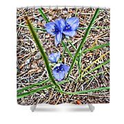Spring Flowers 3 Shower Curtain