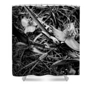 Spring Flowers Bw Shower Curtain