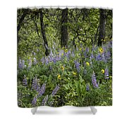 Spring Flowers In The Columbia Gorge Shower Curtain