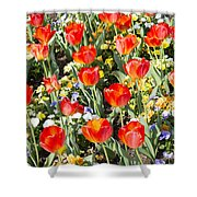Spring Flowers No. 1 Shower Curtain