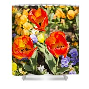 Spring Flowers No. 3 Shower Curtain