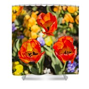 Spring Flowers No. 4 Shower Curtain