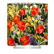 Spring Flowers No. 5 Shower Curtain