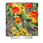 Spring Flowers No. 6 Shower Curtain