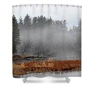 Spring Fog Shower Curtain