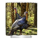 Spring Gobblers Shower Curtain