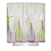 Spring In A Bottle Shower Curtain