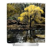 Spring In Central Park Nyc Shower Curtain