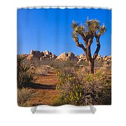 Spring In Joshua Tree National Park Shower Curtain