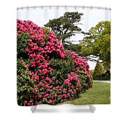Spring In Muckross Garden - Ireland Shower Curtain