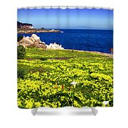 Spring In Pacific Grove Ca Shower Curtain