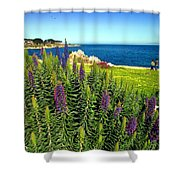 Spring In Pacific Grove Ca Two Shower Curtain