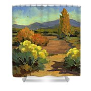 Spring In Santa Fe Shower Curtain