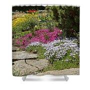 Spring In The Garden Dsc03678 Shower Curtain