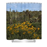 Spring In The Superstition Wilderness Shower Curtain