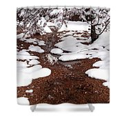 Spring Into Winter Shower Curtain