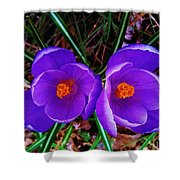 Spring Is Blooming Shower Curtain
