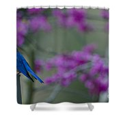 Spring Is Bursting Shower Curtain