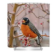 Spring Is Coming Shower Curtain