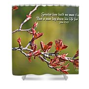 Spring Leaves Greeting Card With Verse Shower Curtain