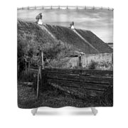 Spring Light - Black And White Shower Curtain
