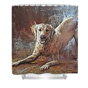 Spring Loaded Shower Curtain